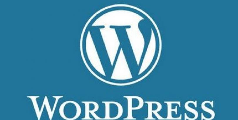 How to choose a WordPress support & hosting provider