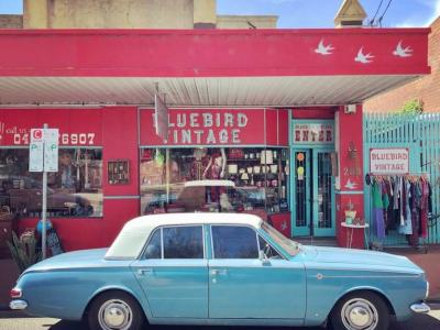 The Best Vintage Clothing Stor..