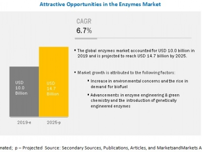 Enzymes Market Growth Opportun..