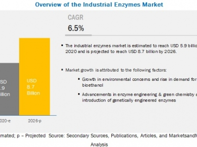 Industrial Enzymes Market is P..
