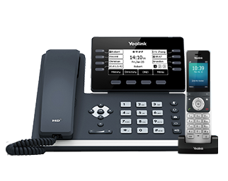 VoIP services for business