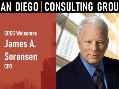 San Diego Consulting Group Wel..